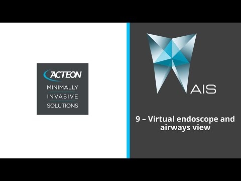 VIRTUAL ENDOSCOPES AND AIRWAY VIEWS